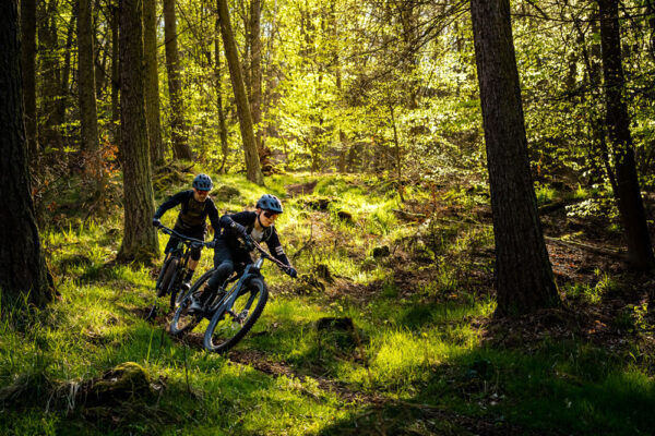 Mountainbiken im Wald