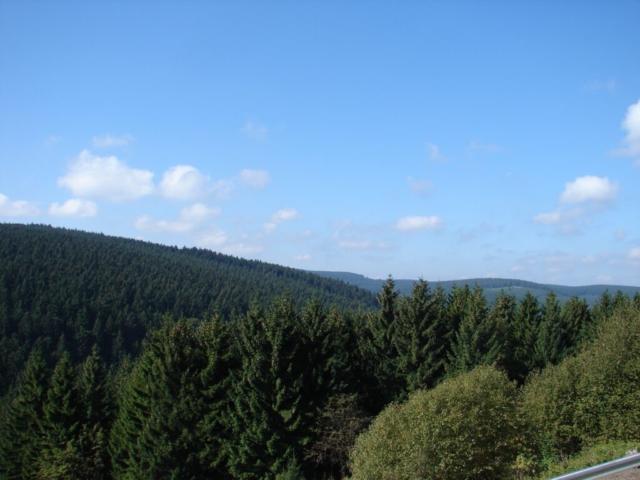 Blick vom Balkon aus in die Natur